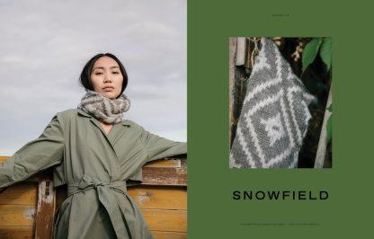 Snowfield - Snowfield Maxim Cyr